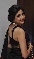 Poonam Kaur Saree New Pics 021.jpg