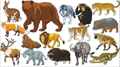 Image of: Cartoon Animal Learning Animals Names And Sounds For Kids With More Finger Family Nursery Song For Children Cpikuclub Learning Animals Name And Sounds Animals Video For Kids Super