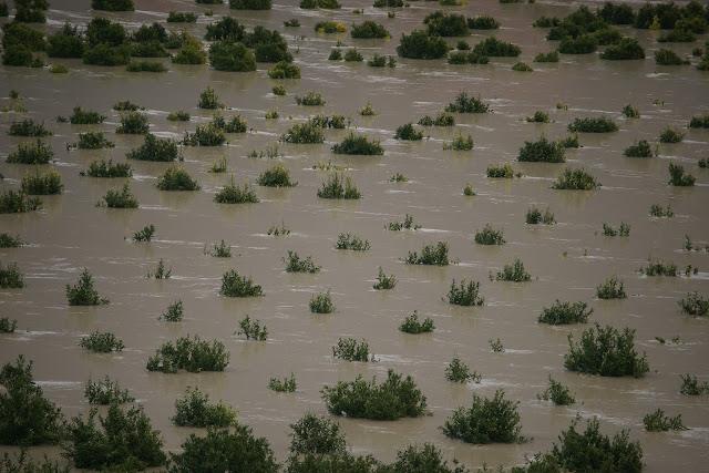 Θεσπρωτία: Πλημμύρισε ο κάμπος της Βρυσέλλας Φιλιατών, ζημιές στους παραγωγούς