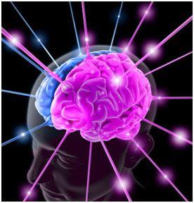 Pnl,Programmazione Neuro Linguistica: Articoli