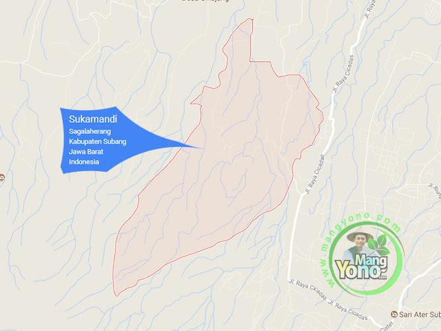 PETA : Desa Sukamandi, Kecamatan Sagalaherang