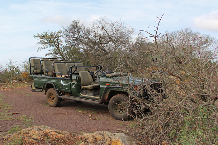 Jeep im andbeyond Phinda Game Reserve