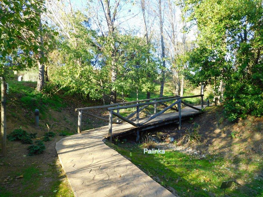 En busca del hada azul jardin botanico el robledo for Jardin azul canal 9