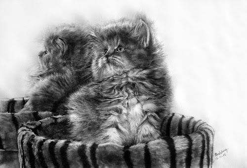 20-Hyper-realistic-Cats-Pencil-Drawings-Hong-Kong-Artist-Paul-Lung-aka-paullung-www-designstack-co
