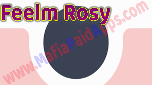 Feelm Rosy - Analog Filters v1.0.19 Apk for Android