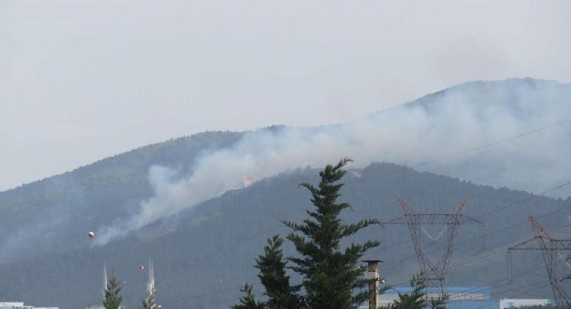 Aydos Orman'nın bir çok yerinde şüpheli yangın!