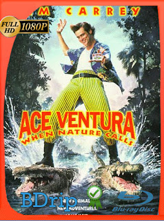 Ace Ventura (1995) BDRip [1080p] Latino [Google Drive] Panchirulo