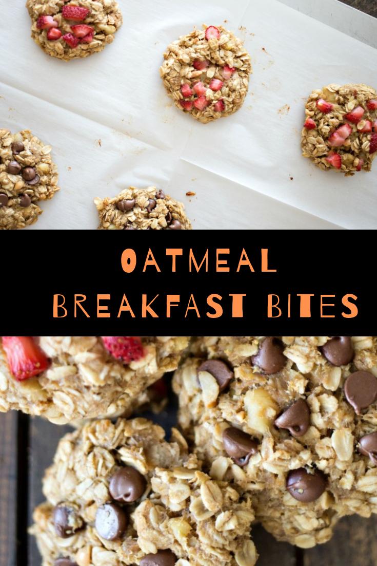 Oatmeal Breakfast Bites Recipe