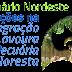 Embrapa e parceiros promovem seminário sobre ILPF no Nordeste em junho