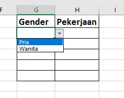 List in Excel
