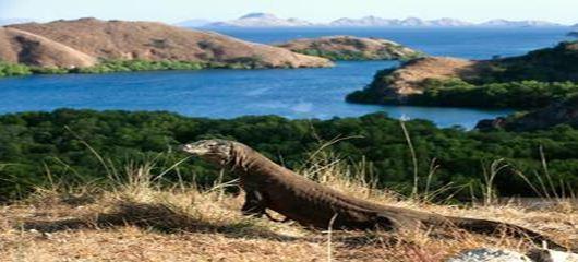 7 Super Exotic Island in Nusa Tenggara