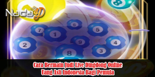 Cara Bermain Judi Live Dingdong Online Uang Asli Indonesia Bagi Pemula