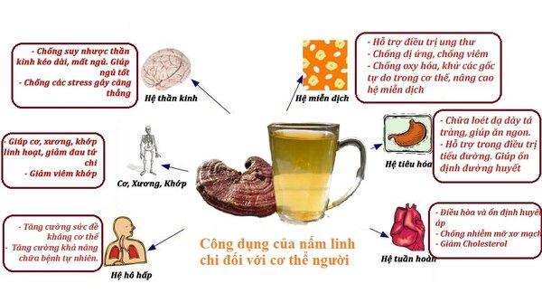 Công dụng của nấm linh chi rất tốt cho sức khỏe con người.