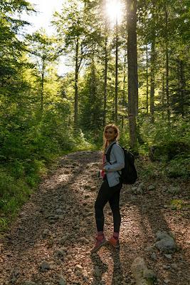 Almwanderung Inzell | Bergwald- Erlebnispfad - Frillensee - Steineralm 13