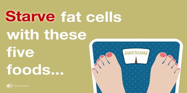 5 Foods That Starve Fat Cells