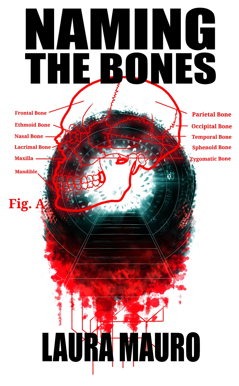 Naming the Bones: Dark Minds Novella 5