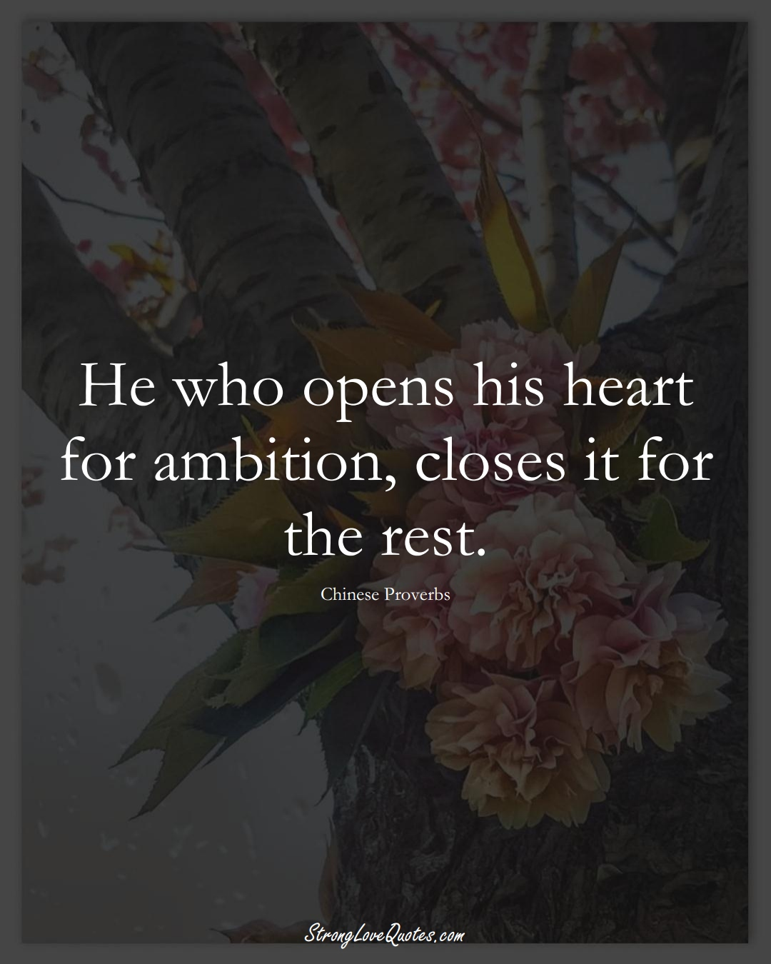 He who opens his heart for ambition, closes it for the rest. (Chinese Sayings);  #AsianSayings
