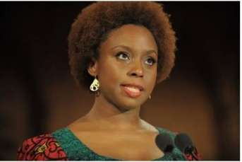 I am an ambassador for myself i dont' represent nigeria chimamanda adichie