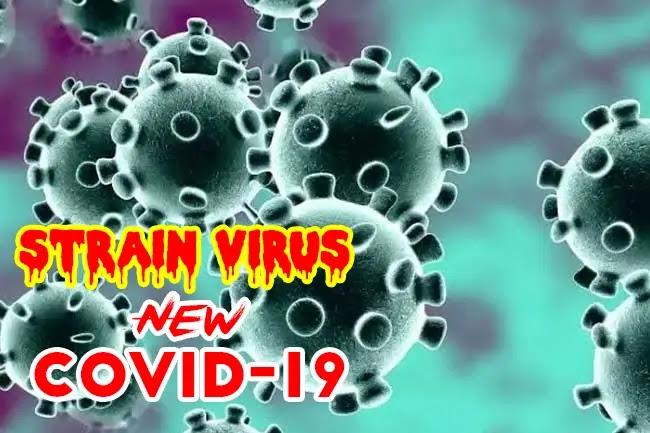 Strain Virus Baru covid