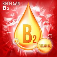Vitamin B2 coenzyme