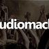 Audiomack APK 4.0.3 -  Download de música nova