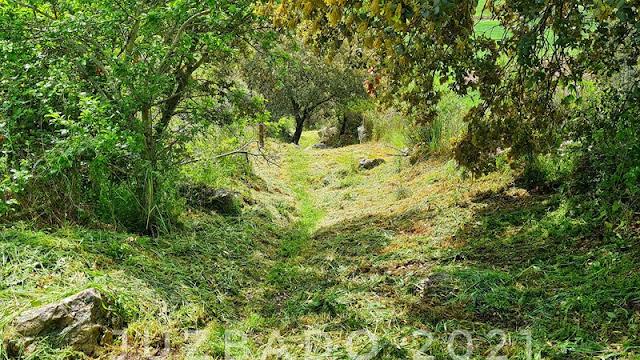 Juzbado, sendas y caminos, Camino de los Bruños, Camino de Santa Lucía