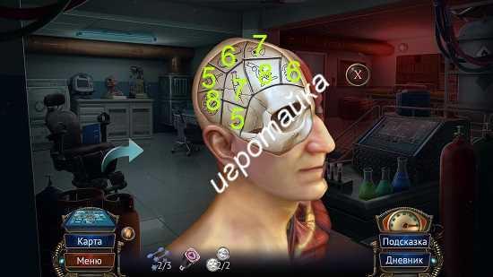 в экспериментальной лаборатории совмещаем плитки на левой стороне мозга