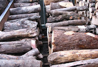 薪棚に積む