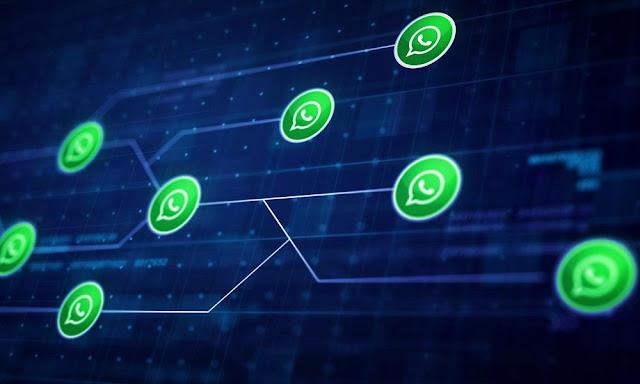 Whatsapp toma acciones y ofrece recompensa para acabar con las noticiasfalsas