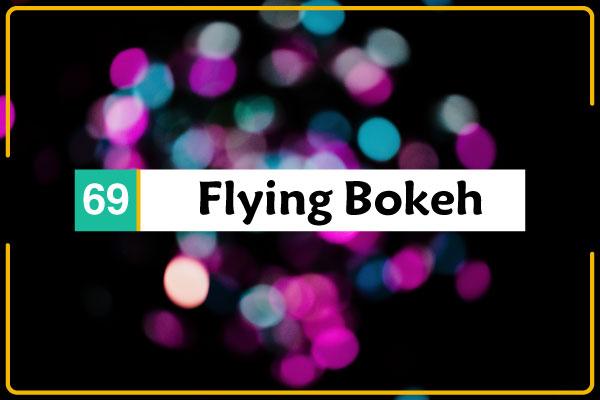 69 صورة للـ بوكيه Flying Bokeh