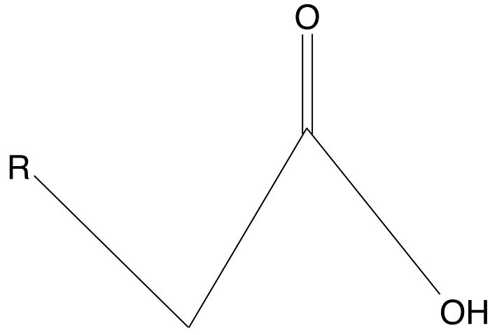 Estructura de un ácido graso