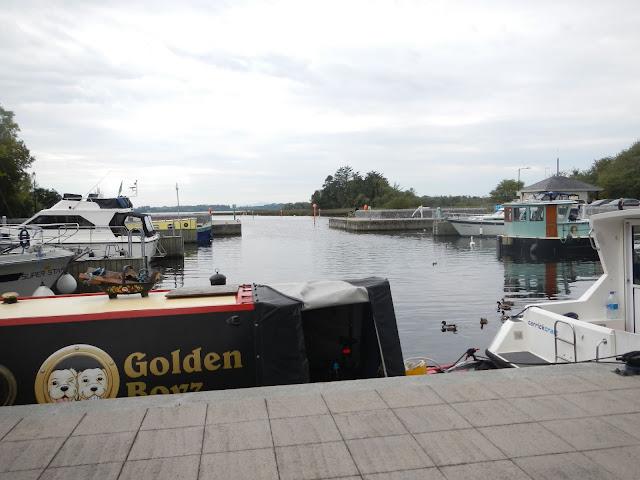 Im Vordergrund eine Barge, seit 8 Jahren ununterbrochene Heimat einer Londonerin mit ihren beiden Golden Retreavern