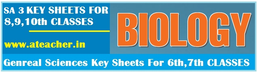 A.P SA 3 BILOGY KEY SHEETS 2017