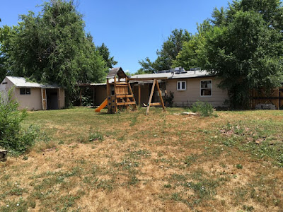 Backyard with Playset and Grass