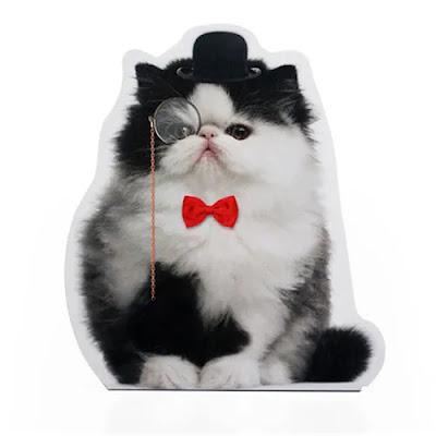 trava-portas-gato