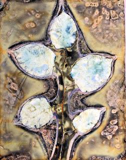 Sue Reno_wet cyanotype_image 898
