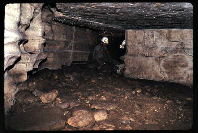 Interior de la Cueva de los Tayos.