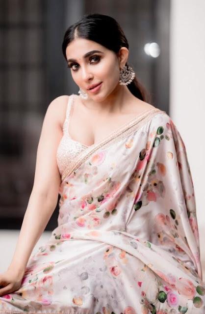 Parvati Nair hot in saree photos Navel Queens