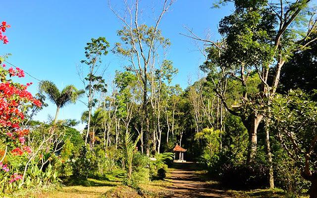 Jalan setapak di Pulau Sekarsari
