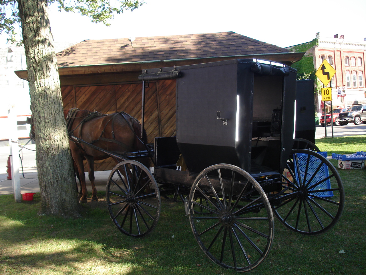 Priscilla Kibbee: The Amish are Coming! The Amish are Coming!