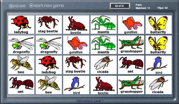 El Baúl De Innela Aprendemos Nombres De Insectos En Inglés