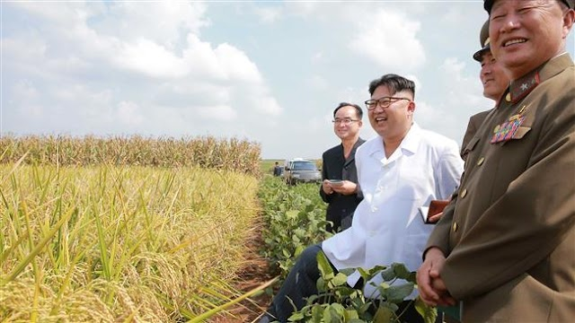 North Korea vice foreign minister Kung Sok-Ung exiled to farming area after UK ambassador defects