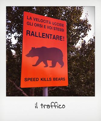 Cartello la velocità uccide gli orsi nel parco nazionale d'Abruzzo