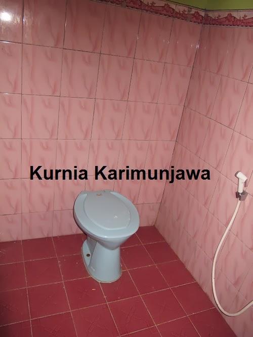 kamar mandi pelangi