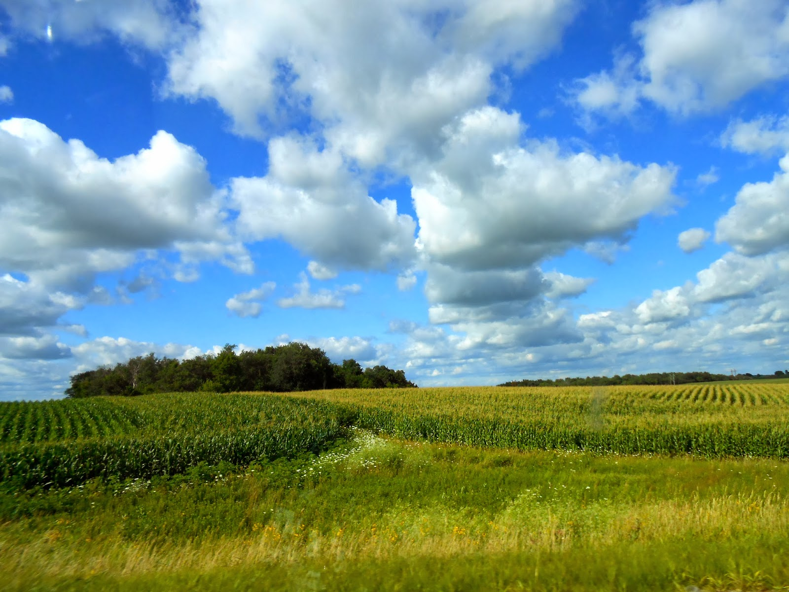 Driving through Arlington, Iowa