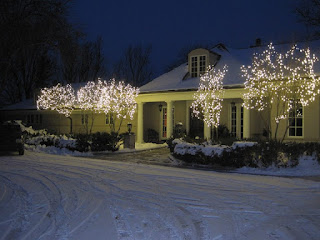 professional Christmas light installers Ann Arbor