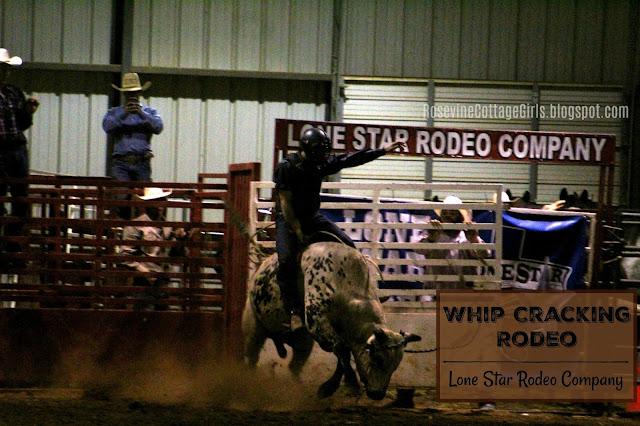 #rodeo #bullriding #cowboys #cows #horses