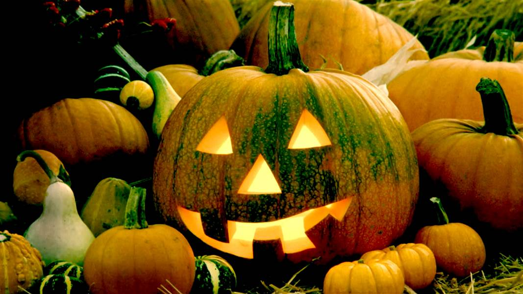 National Pumpkin Day Wishes Beautiful Image
