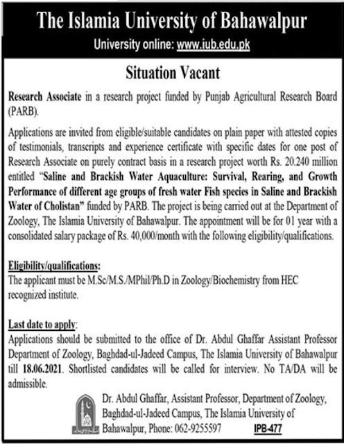 University Jobs Today Islamia University June 2021