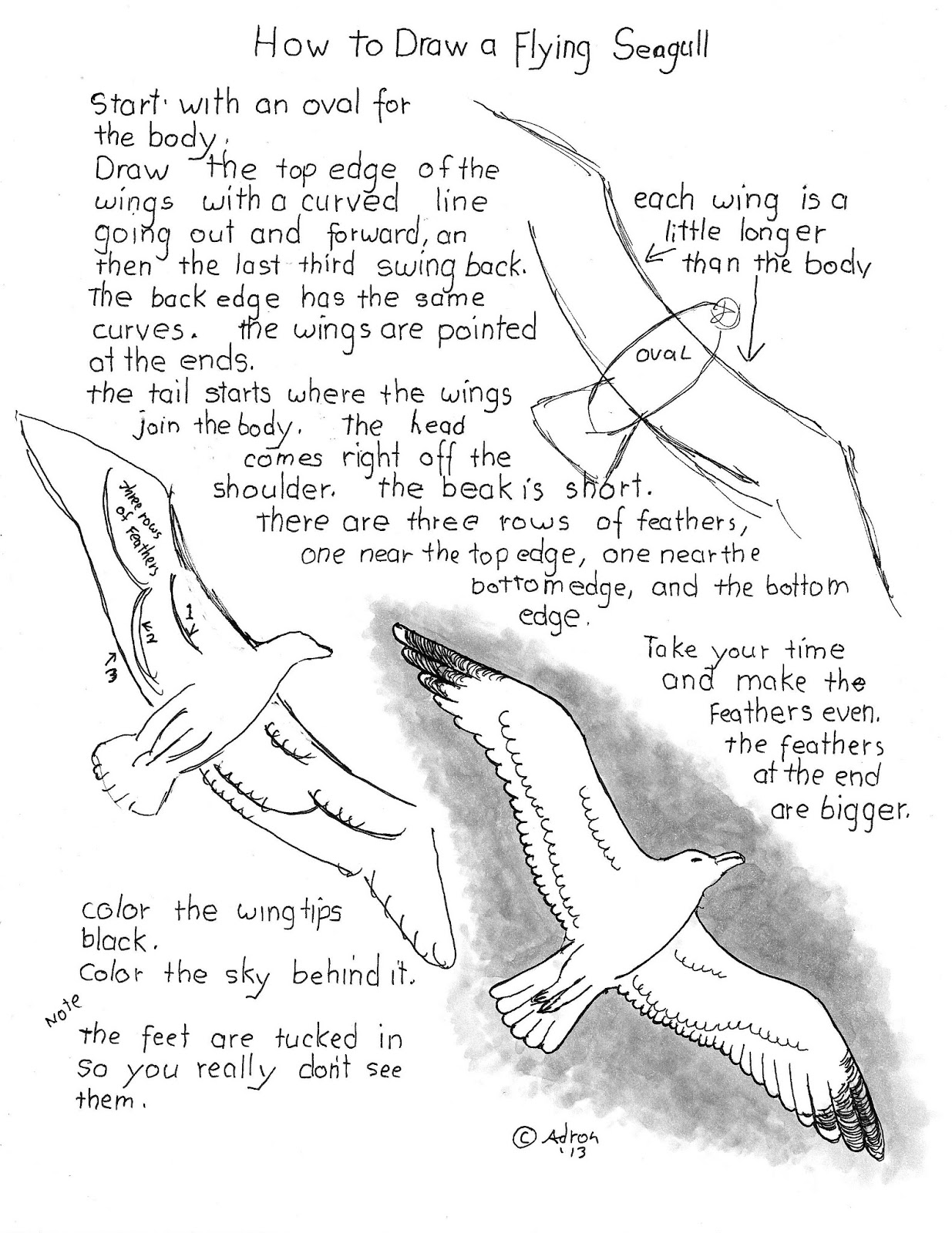 how to draw a flying seagull worksheet